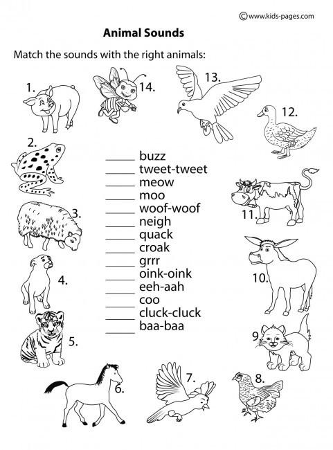 Animal Sounds B&w Worksheet
