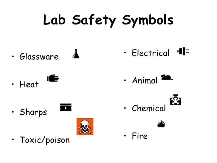 14+ Lab Safety Symbols Worksheet