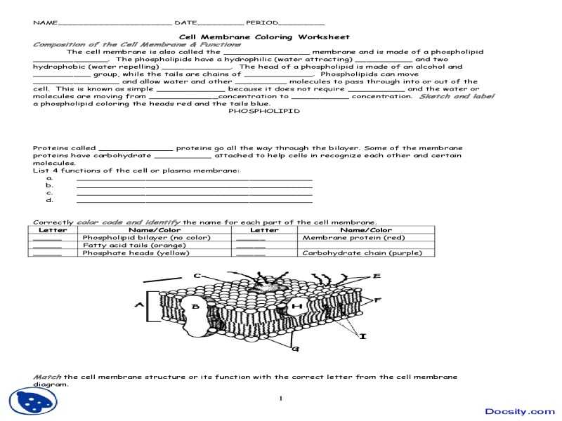 Cell Membrane And Tonicity Worksheet Awesome Cell Membrane And