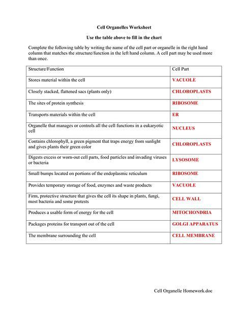Cell Organelles Worksheet Answer Key Biology
