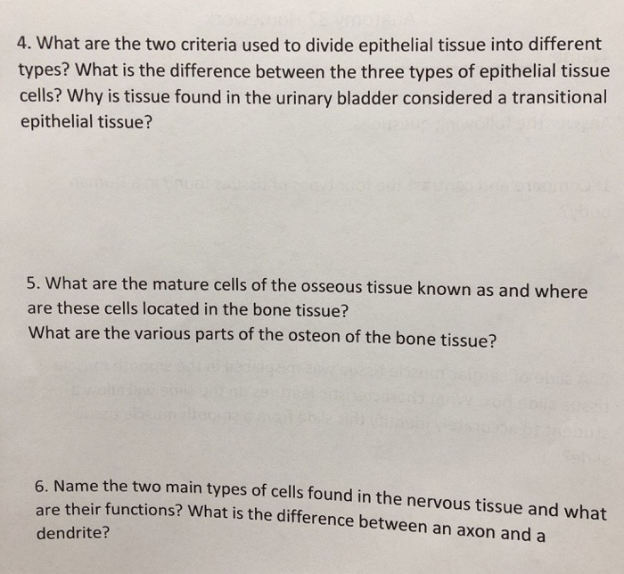Chapter 5 Tissues Worksheet Answers Beautiful Chapter 3 Cells And