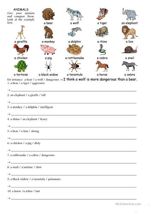 Comparing Animals Worksheet