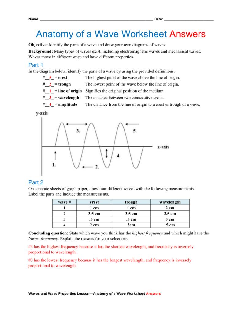 Diagram Of A Wave Worksheet