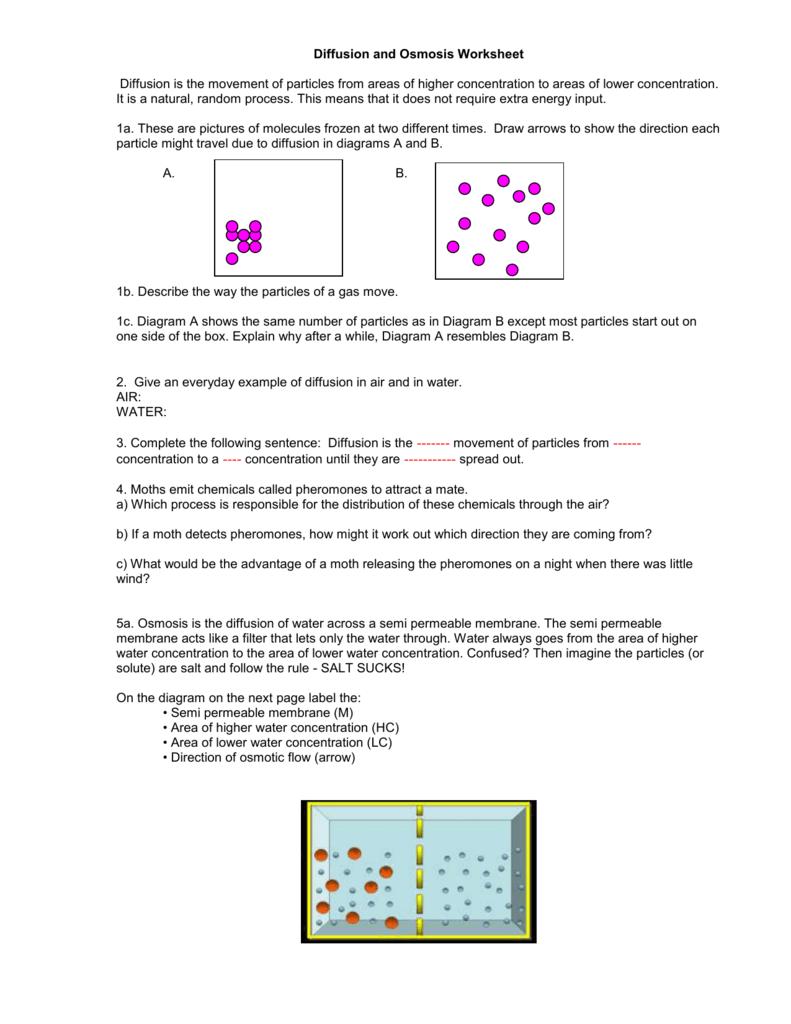 Diffusion Diagram Quiz