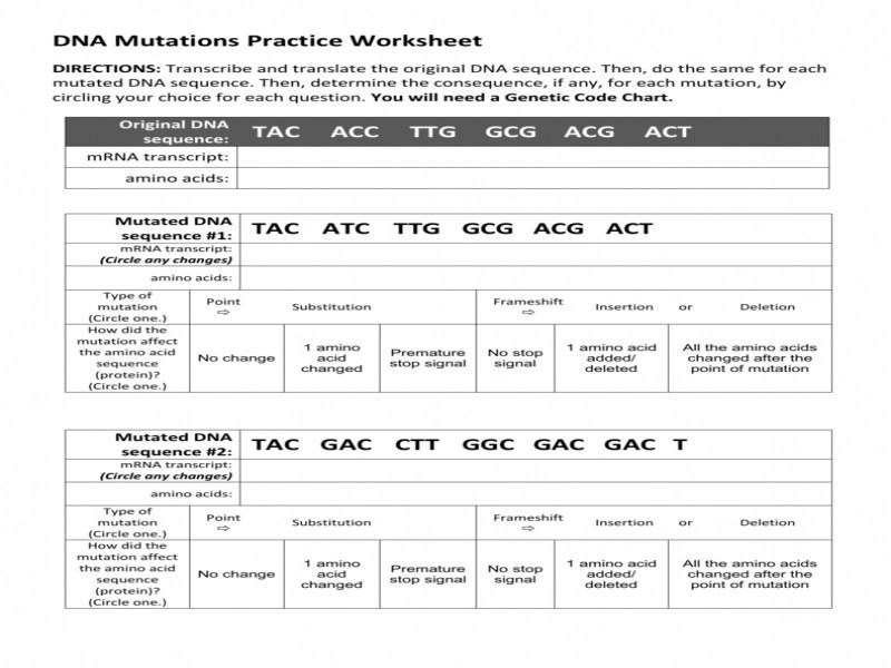 Dna Mutations Practice Worksheet Key