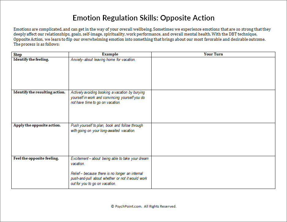 Emotional Regulation Skills Worksheet  2260082