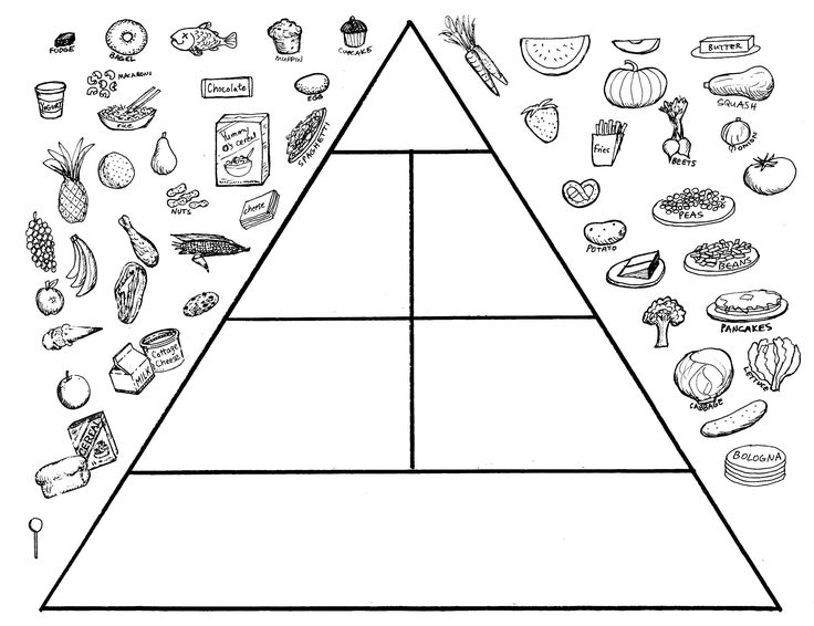 Food Pyramid Worksheets 25 Best Of George Washington Worksheets