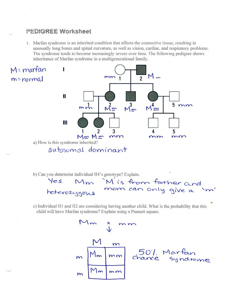 Genetics Pedigree Worksheet Answer Key Huntington S Disease