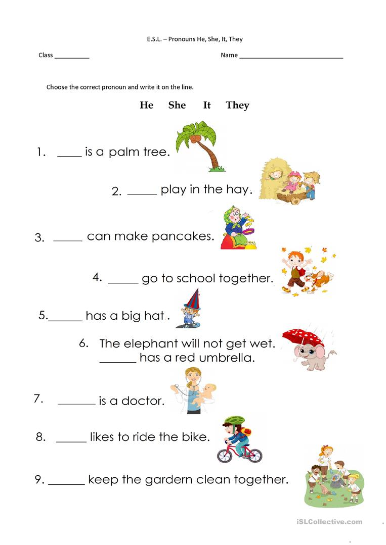 He And She Worksheets For Preschool  481818
