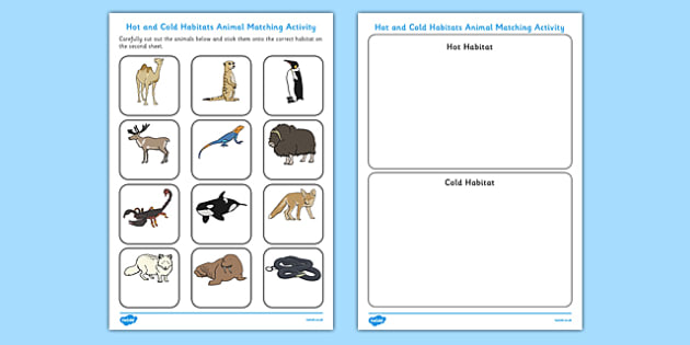 Hot And Cold Habitats Animal Sorting Worksheet