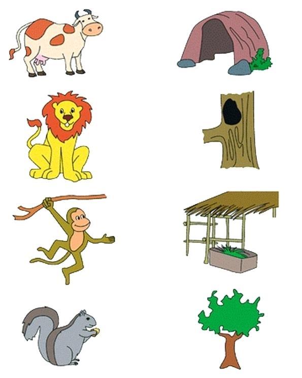 Imágenes De Animals And Their Habitat Worksheets For Kindergarten