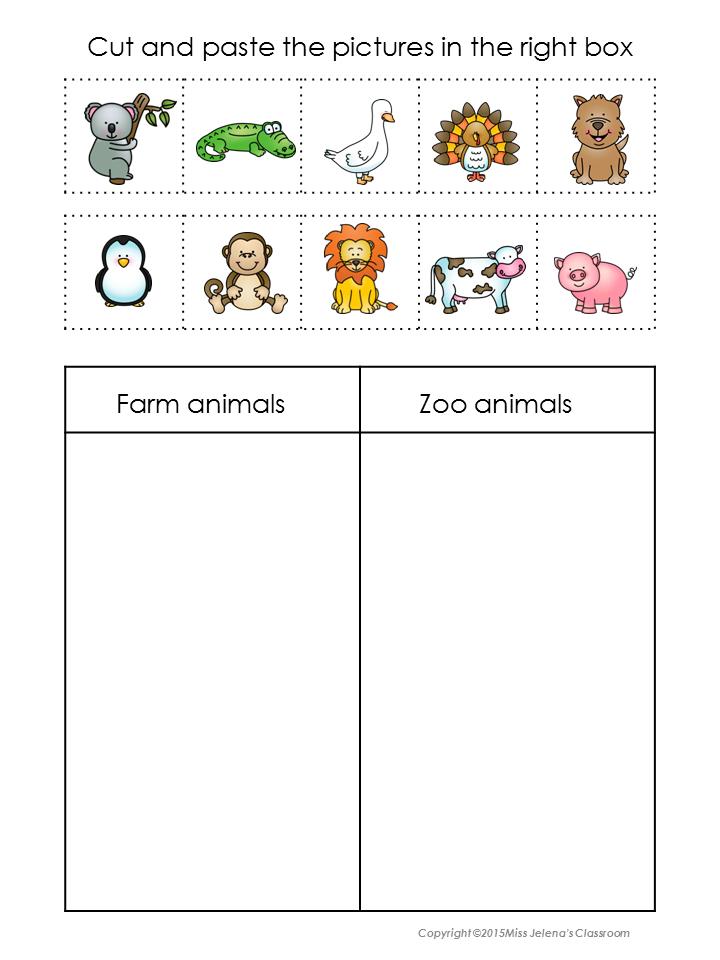 Kindergarten Animal Sorting Worksheet 236844