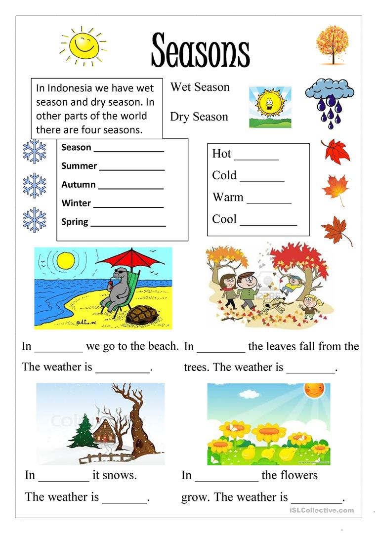 Kindergarten Seasons Worksheet Free  25523