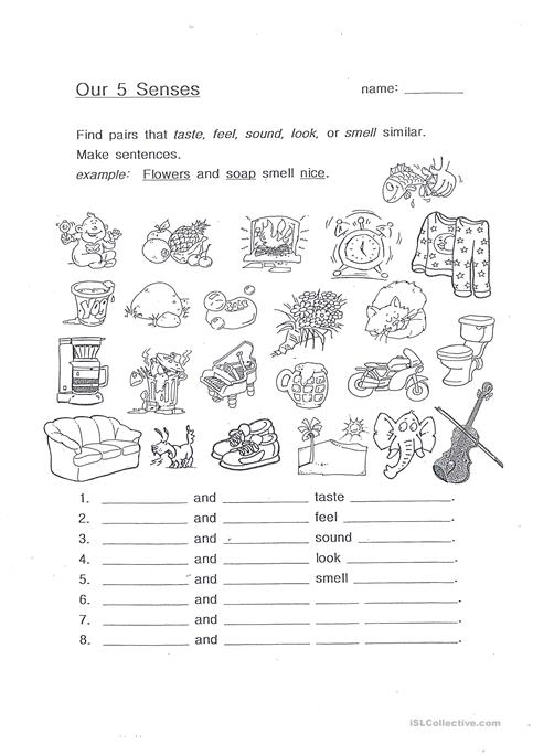 Our 5 Senses Worksheet