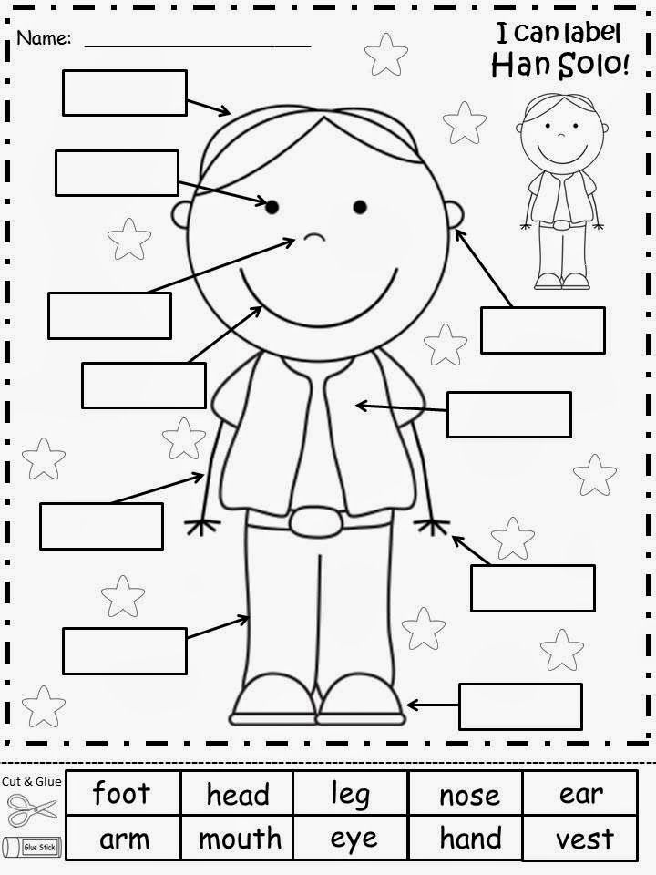 Parts Of The Body Worksheets For Kindergarten Pdf 683982