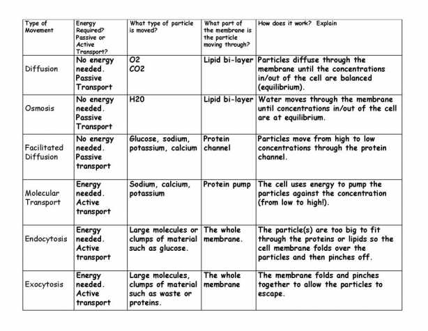 Plasma Membrane Worksheet