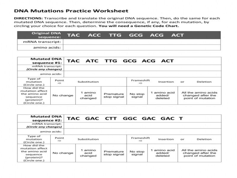 Worksheet 48 Best Of Gene Mutations Worksheet Answers Sets Gene