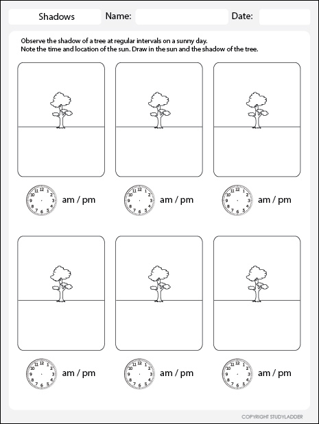 Recording Shadows Worksheet, Science Skills Online, Interactive