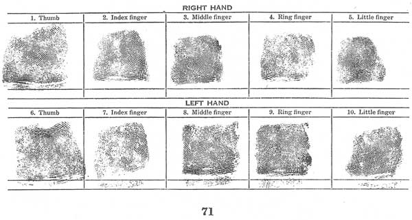 Science Of Fingerprints  Classification And Uses