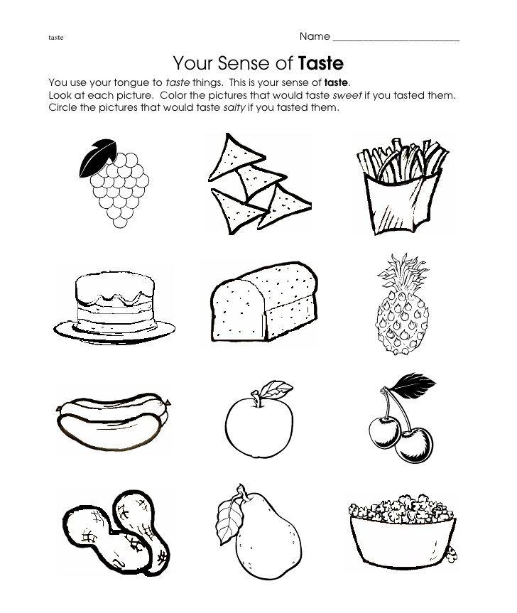 Sense Of Taste Worksheets For Kindergarten