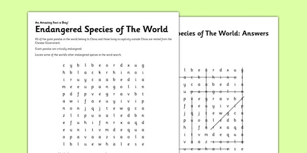Endangered Species Of The World Worksheet   Activity Sheet