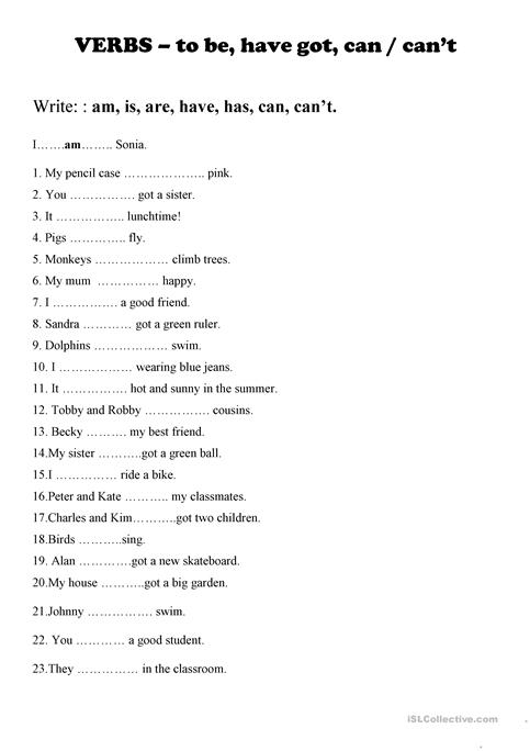 Verbs Am, Is, Are, Have Got, Can, Can't Worksheet