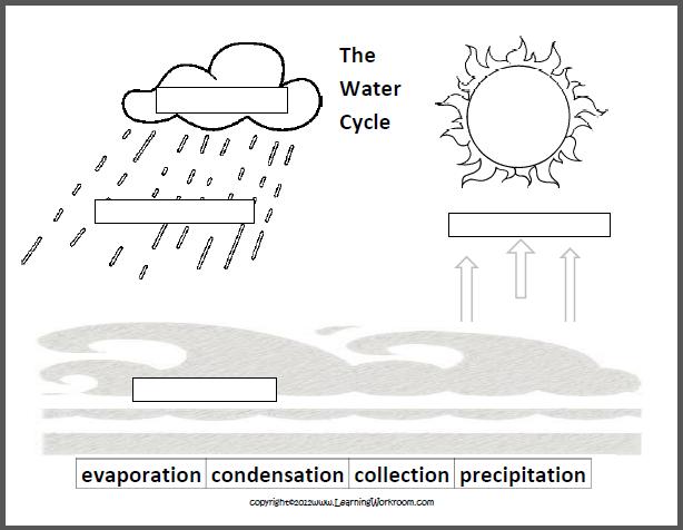 Water Cycle Labeling Worksheet  1433754