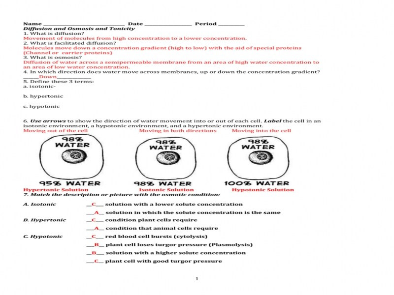 Worksheet Osmosis Tonicity Key  1375444