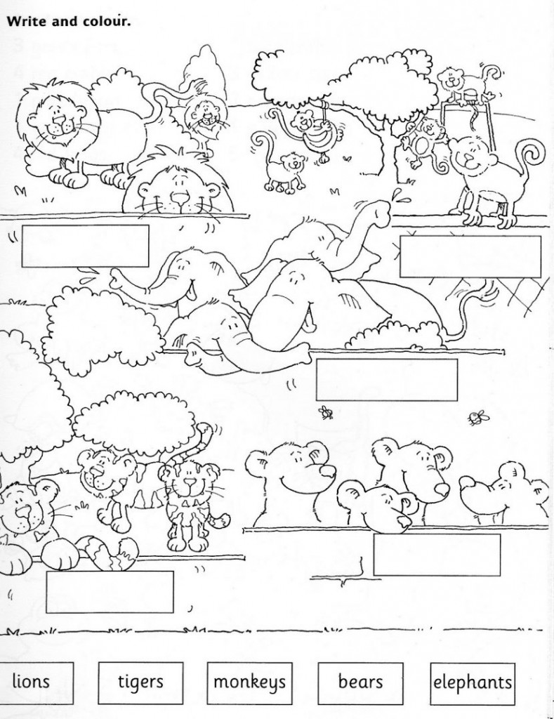 Worksheets On Wild Animals For Kindergarten  1360003