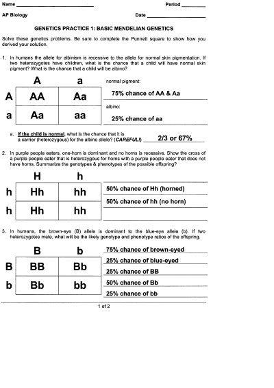 Genetics Practice 1  Basic Mendelian Genetics