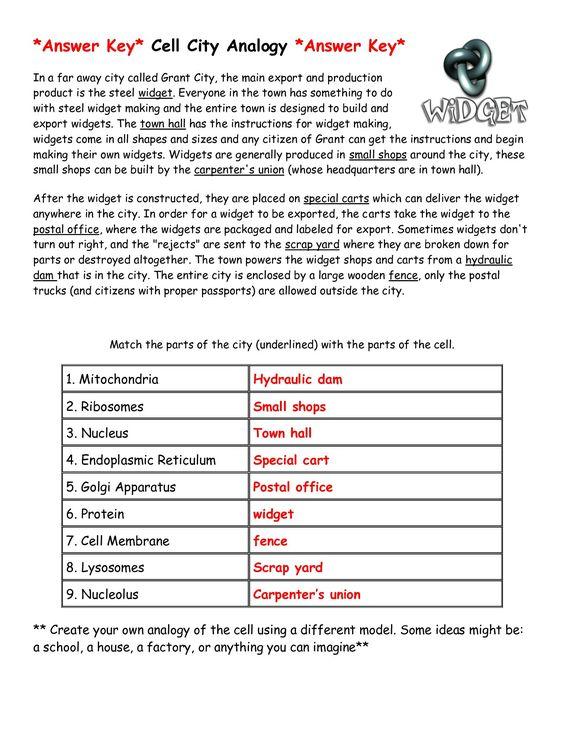Cell City Analogy Worksheet Widget Answer Key