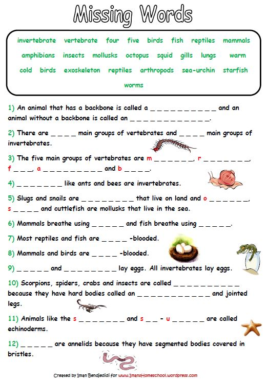 Animals Classification Worksheet Worksheets For All