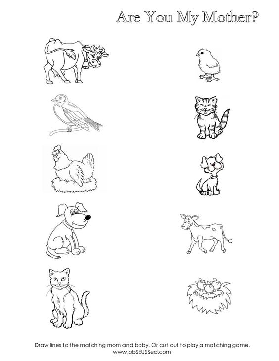 Baby Animals And Their Mothers Worksheet Worksheets For All