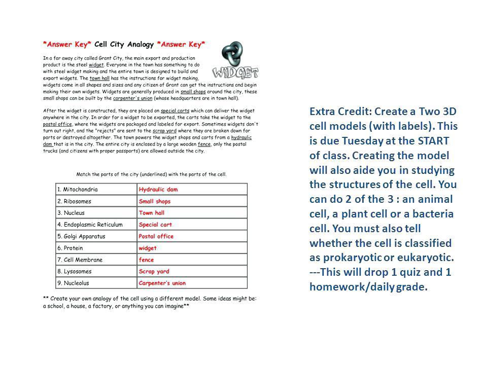 Analogy Worksheet And Answer Key By The Files Practice Worksheets
