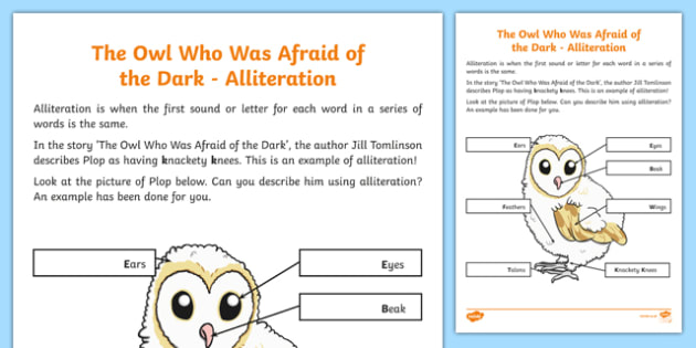 Alliteration Worksheet   Activity Sheet, Worksheet