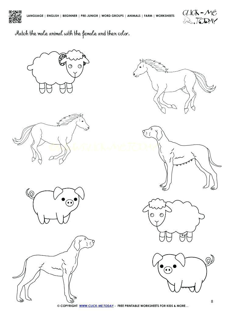 Farm Animal Math Worksheets Kindergarten Farm Animals Worksheet