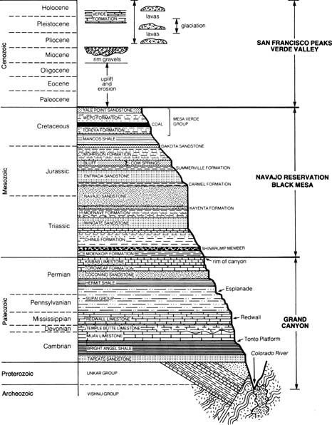 Erypedimot  Geological Time Scale