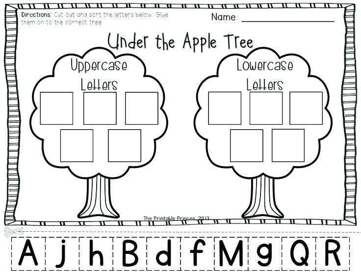 Free Apple Worksheets For Kindergarten Life Cycle Printable