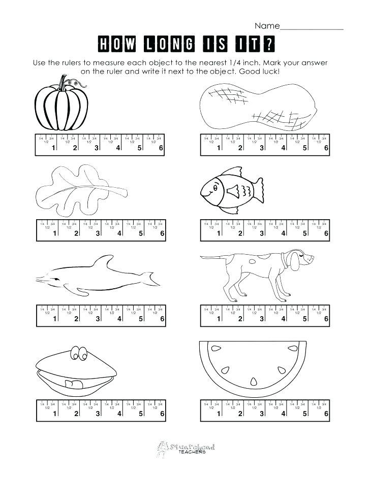 Grade Measurement Worksheets Geometry And Geometric Worksheet 4