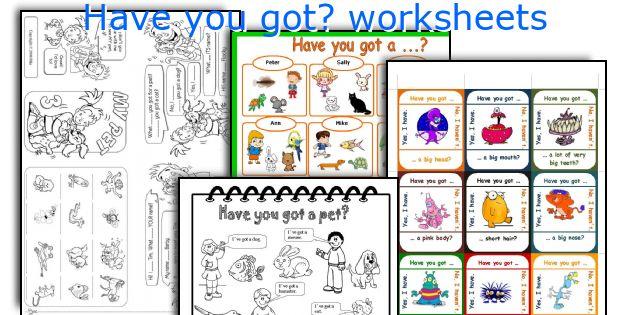 Have You Got  Worksheets