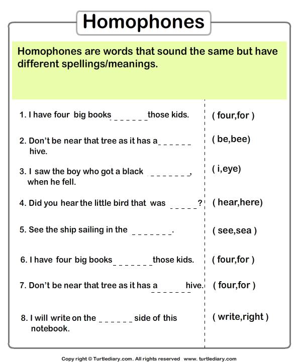Identify The Homophone Worksheet