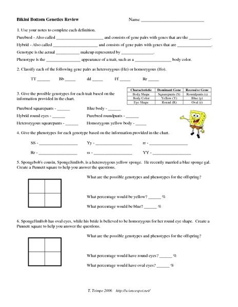 Spongebob Genetics Worksheet Answers Worksheets For All