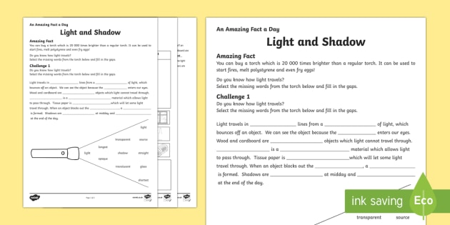 Light And Shadow Worksheet   Activity Sheet