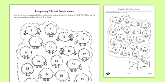 Recognising Odd And Even Numbers Worksheet   Activity Sheet