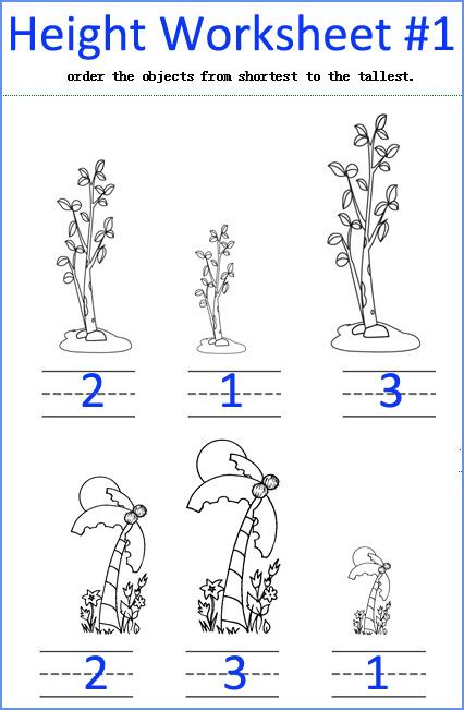 Height Worksheets, Kindergarten Measurement Worksheets
