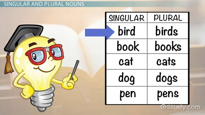 Singular & Plural Nouns  Lesson For Kids