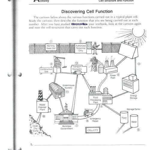 Cell City Analogy Worksheet Answer Key