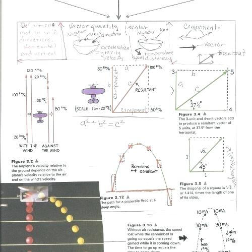 Conceptual Physics Worksheets All Worksheets Conceptual Physics