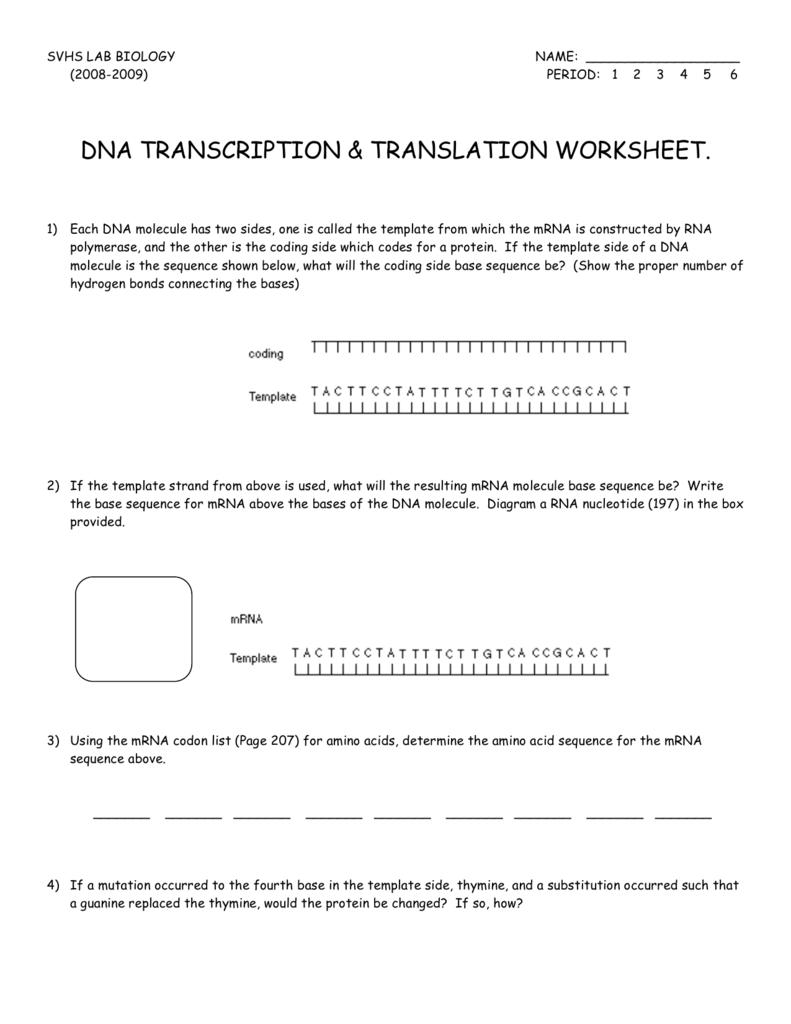Rna And Transcription Worksheet Answer Key Unit 4