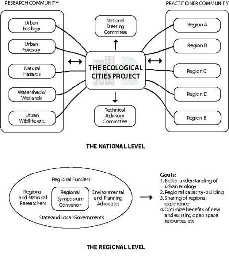 Ec Organization